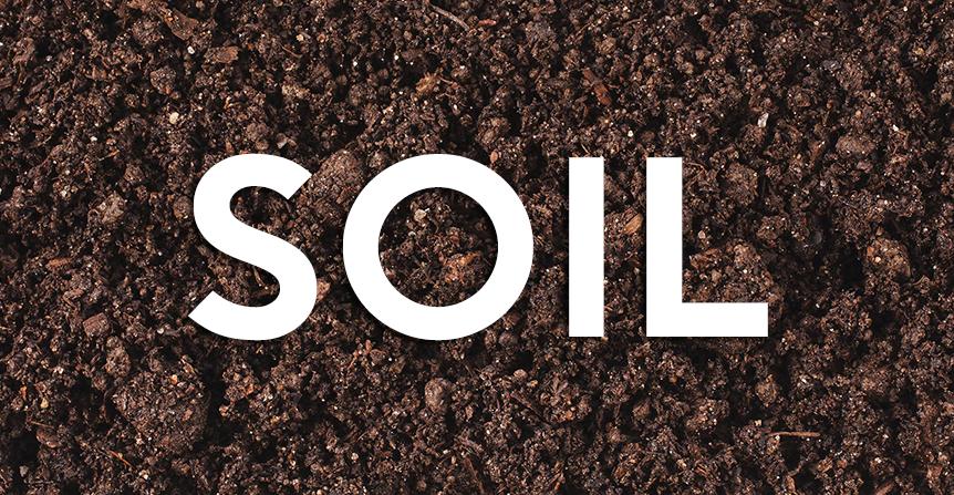 Wholesale Mushroom Soil